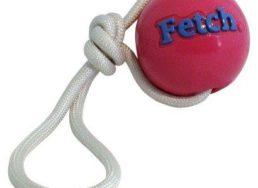 Fetch Ball with Rope von Planet Dog aus der erfolgreichen Produktreihe Orbee-Tuff können Sie bei WILD HAZEL kaufen